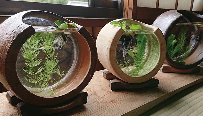 東児の花窯
