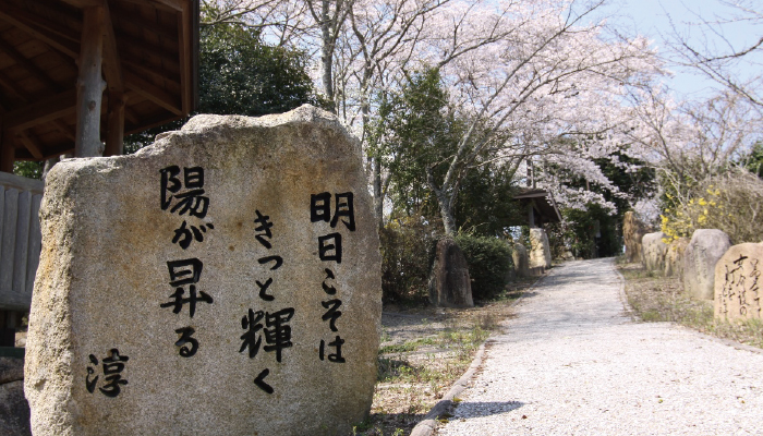川柳の小径・公園